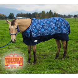 1200 Denier Aztec Circle Ripstop Waterproof Winter Blanket
