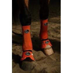 Rifleman Dog Collar and Matching Leash